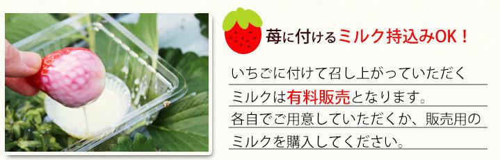 ichigo_02